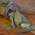 Рецепты с лавровым листом при псориазе